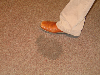 Affordable Carpet Cleaning in Pittsburgh PA